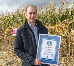 igp polska rekord ziarno kukurydza